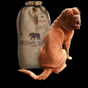 Comida para perros ecológica
