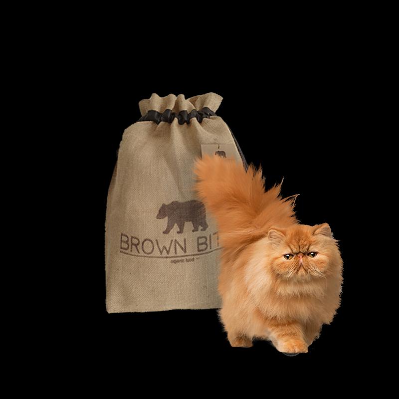 Comida para gatos ecológica