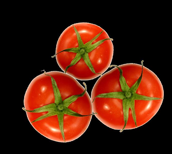 tomate verduras y legumbres