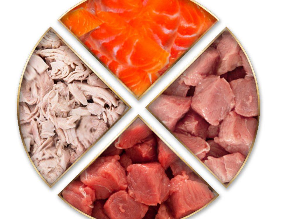 Brownbites - Proteínas, Ácidos Grasos Omega 3, Complementos nutricionales para mascotas