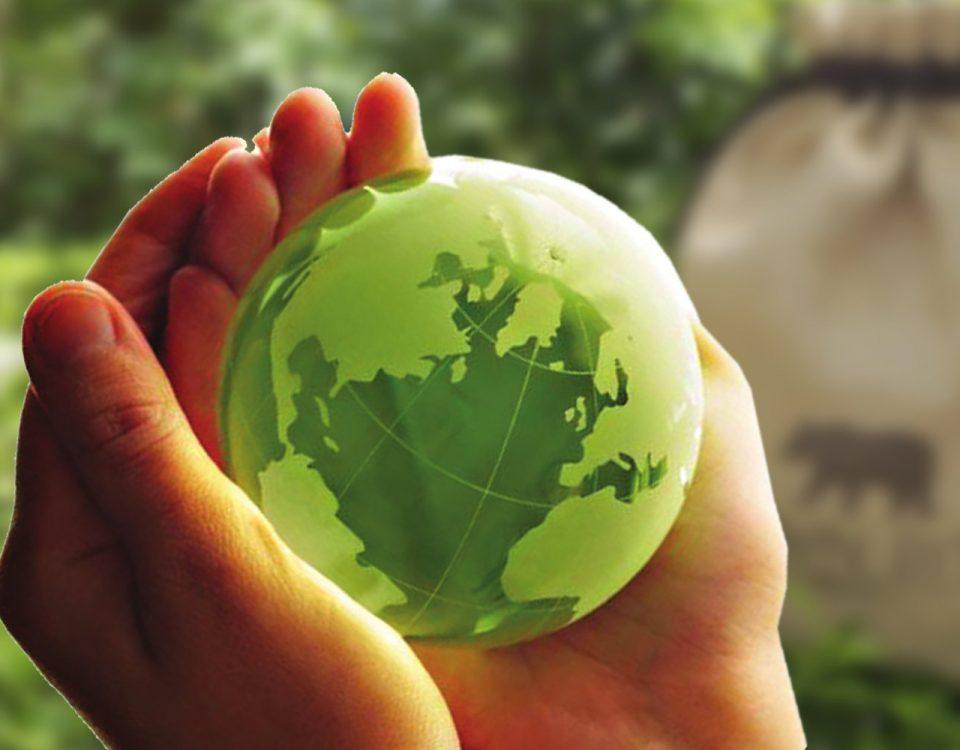 Tips fáciles y simples para ayudar al planeta tierra